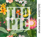 tropical vector floral summer... | Shutterstock .eps vector #641827192