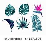 vector tropical trendy summer... | Shutterstock .eps vector #641871505