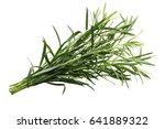 bundle of fresh tarragon ...   Shutterstock . vector #641889322