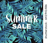 summer sale banner with... | Shutterstock .eps vector #641941486