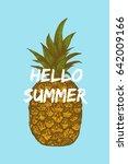 hello summer illustration with...   Shutterstock .eps vector #642009166