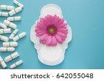 pink gerbera daisy flower and... | Shutterstock . vector #642055048