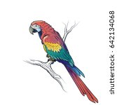 red macaw parrot ara... | Shutterstock . vector #642134068
