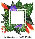 tropical leaves and flowers.... | Shutterstock .eps vector #642253396