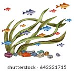 watercolor sea weed  fishes ... | Shutterstock . vector #642321715
