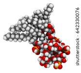 lipopolysaccharide  lps  lipid...   Shutterstock . vector #642330076