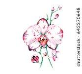 wild orchid in watercolor. good ...   Shutterstock . vector #642370648