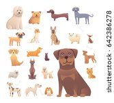 Stock vector group of purebred dogs illustration for dog training courses breed club landing page 642386278