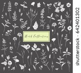 vector hand drawn collection of ... | Shutterstock .eps vector #642401302
