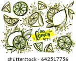 set of stylized hand drawn ink... | Shutterstock .eps vector #642517756