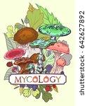 mycology cover illustration... | Shutterstock .eps vector #642627892