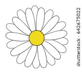 white daisy flower vector... | Shutterstock .eps vector #642675022