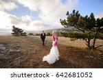 bride and groom outdoors   Shutterstock . vector #642681052