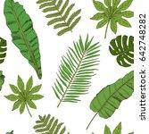 floral seamless pattern.... | Shutterstock . vector #642748282