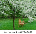 A Seat Among The Blossoms A...