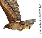 gurney eagle on white. 3d... | Shutterstock . vector #642769165