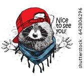 vector raccoon with red cap and ... | Shutterstock .eps vector #642806296