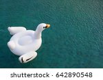 a beautiful white swan pool... | Shutterstock . vector #642890548