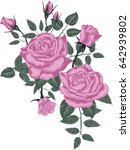 pink roses    vector art  | Shutterstock .eps vector #642939802