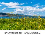 sea view with yellow flowers ... | Shutterstock . vector #643080562