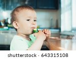 little boy eating a fresh... | Shutterstock . vector #643315108