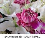 pink lotus in group of flowers | Shutterstock . vector #643445962