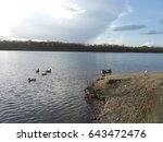 nature | Shutterstock . vector #643472476