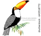toucan bird watercolor... | Shutterstock . vector #643518772