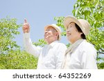 Pointing Japanese elderly couple - stock photo
