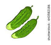 cucumbers. vector illustration... | Shutterstock .eps vector #643582186
