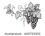 set of grapes monochrome sketch.... | Shutterstock .eps vector #643725352