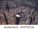 destroyed tropical rainforest...   Shutterstock . vector #643735126