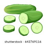 vector illustration isolated on ... | Shutterstock .eps vector #643769116