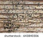 crack grunge dirty stain on... | Shutterstock . vector #643840306