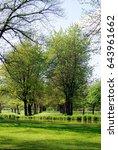 trees in baroque garden in... | Shutterstock . vector #643961662