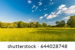 beautiful bright landscape of... | Shutterstock . vector #644028748