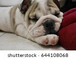 Stock photo can i sleep with you 644108068