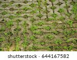 grass growth in brick | Shutterstock . vector #644167582