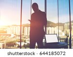 silhouette of a man proud ceo... | Shutterstock . vector #644185072