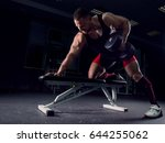 professional athlete in the gym ... | Shutterstock . vector #644255062