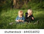 twins   Shutterstock . vector #644316052
