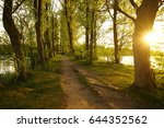 summer over the trees | Shutterstock . vector #644352562