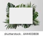 palm leafs background concept   Shutterstock . vector #644403808