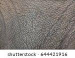 southern white rhinoceros ...   Shutterstock . vector #644421916