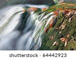 Detail Of Small Water Stream I...