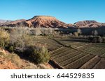 oasis in the dades gorge are a... | Shutterstock . vector #644529835