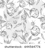 ink hand drawn illustrations of ... | Shutterstock .eps vector #644564776