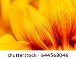 abstract natural background ... | Shutterstock . vector #644568046