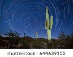 Iconic Sonoran Desert Saguaro...