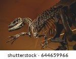 Full Size Skeleton Of The...
